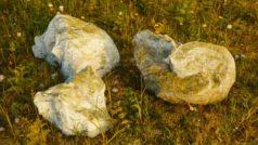 prozedural Steine