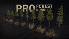 free Baum Assets