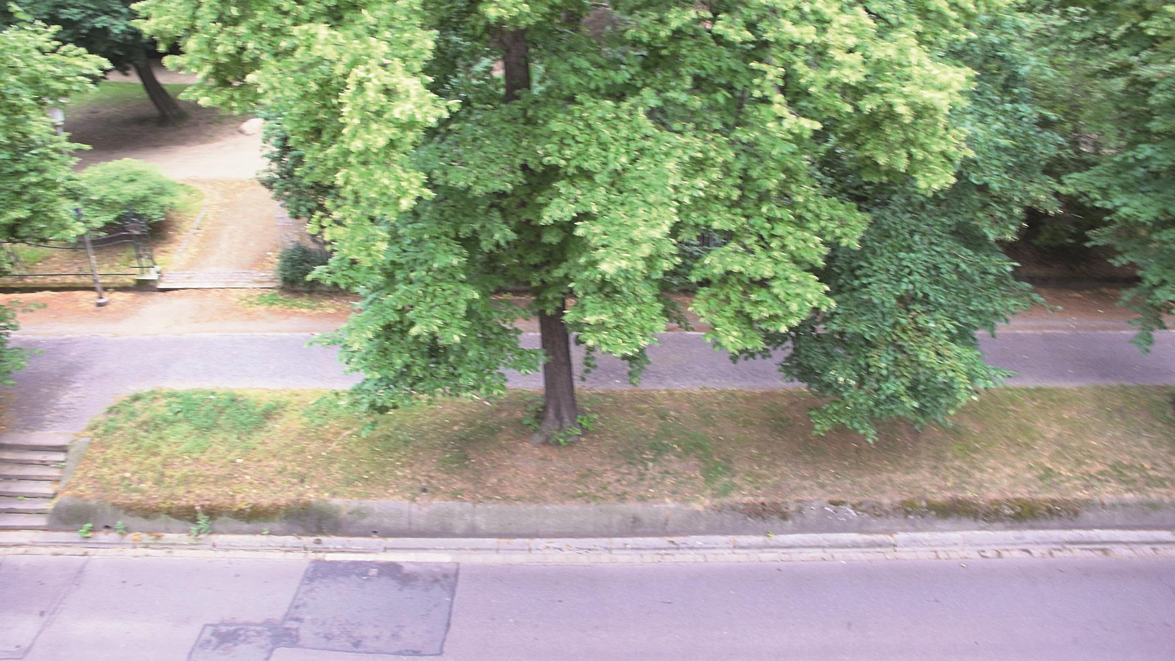 Den Farbstich auf der Straße durch automatische Weißbalance beseitigt EPICOLOR nicht sofort.