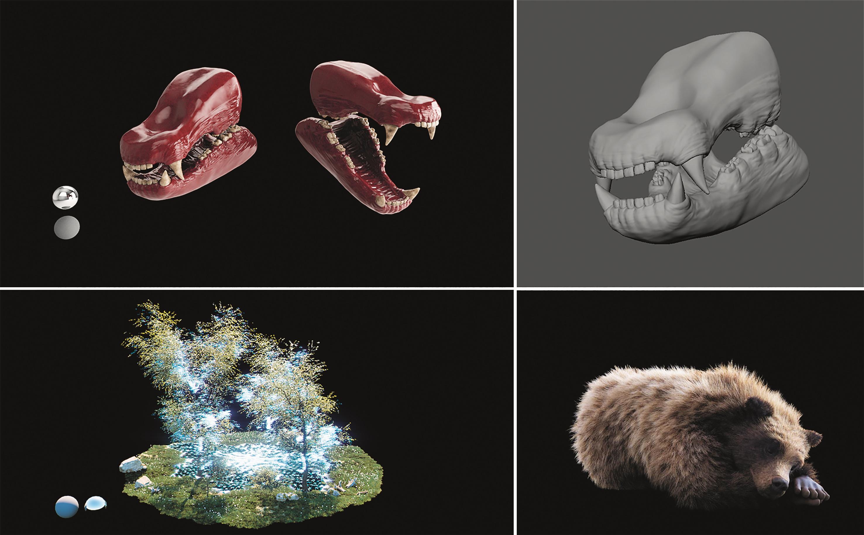 3D-Details des Bären